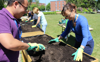 UHN's First Wheelchair Accessible Garden